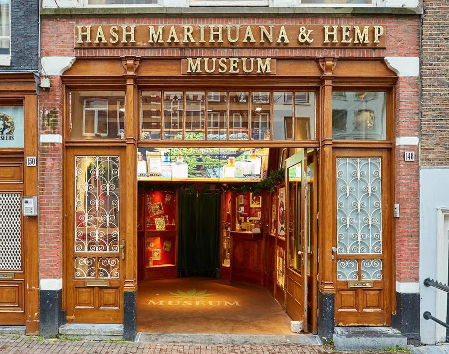 Одежда из конопли в амстердаме желчный пузырь марихуана
